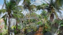 Flora Tropenhaus neu